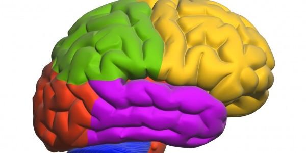 Entrenamiento cognitivo y del autocontrol totalmente innovador